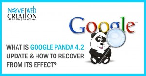 What-is-Google-Panda-4.2-update-and-How-to-Recover-From-Its-Effect