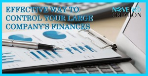Effective way to Control Your Large Company's Finances